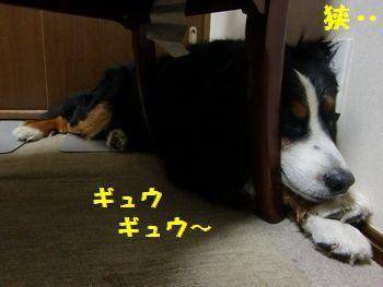 せ・・狭い~!
