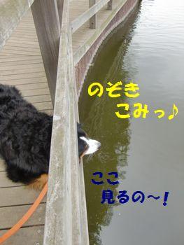 いいじゃん~!ここで沼見ようよ~!!