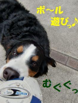 やっぱボール遊び~!!