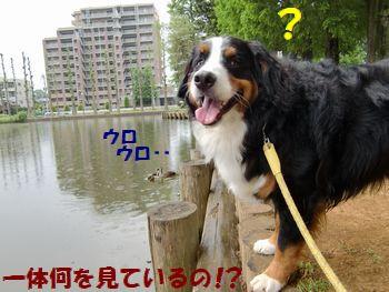 なんかあったの~!?