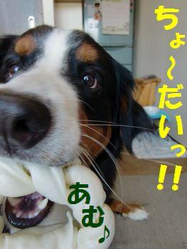食べるが勝ち~!!