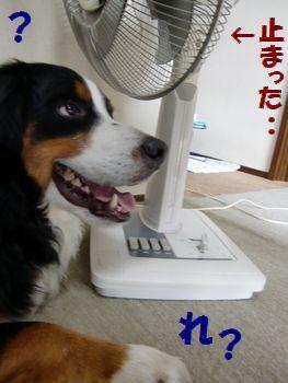 風こない~!!