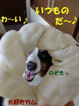 わっかか~♪