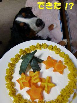 僕のケーキ!?