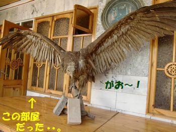 鳥さんの後ろの部屋~!