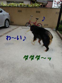 リードたっのし~!!