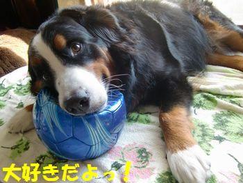 青いボールかっこいい??