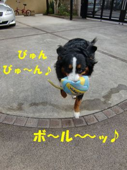 ぼーる!ボール!パン食べたから運動~!