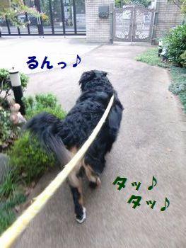 さぁ~行こう~!