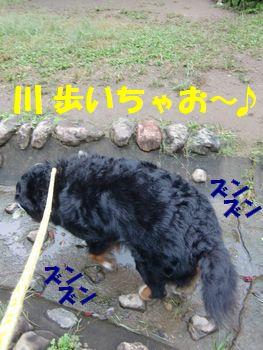 川歩けるよ~♪