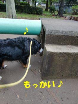 もっかいする~♪