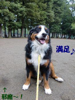 公園で引っ張りっこ楽し~♪