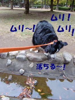 ジャンプなんてムリだし~っ!!
