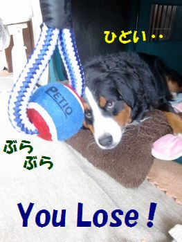 You Win・・・。