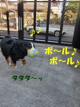 んじゃボール~!