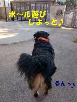 マスカラなんかよりボール!!