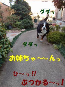 僕走る~!!