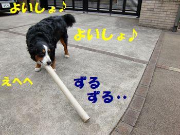 なが~い!!