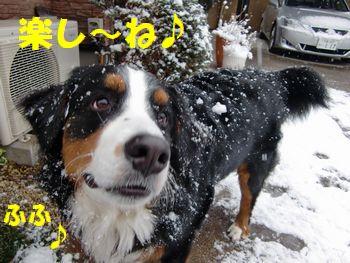 雪、楽し~!!
