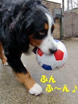 このボールで遊ぶの~♪