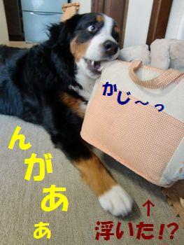 めんどくさ~い!!