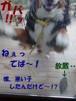 サンダルじゃダメ~!?