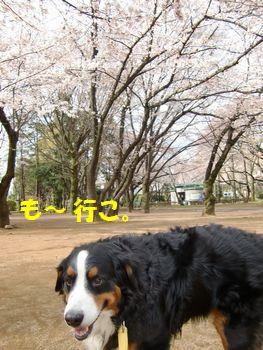 お散歩しよ~!