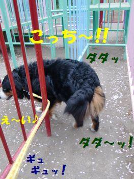 コッチ行くの~!!