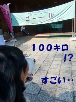 100キロ歩くの~!?