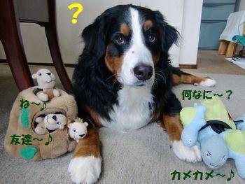み~んなお友達なの~!
