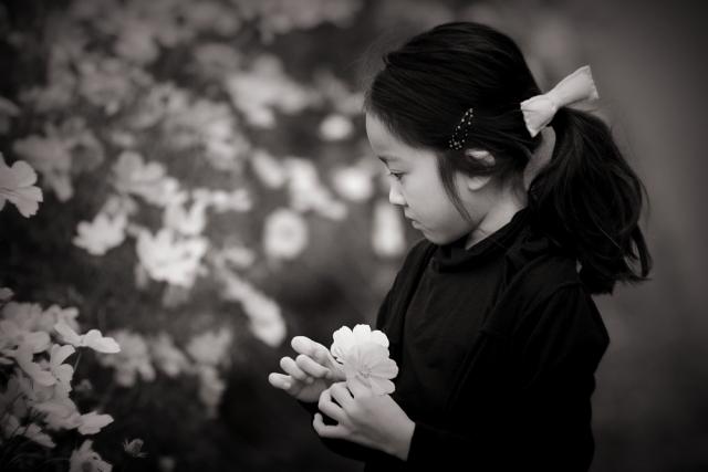 花散らしと幼女。