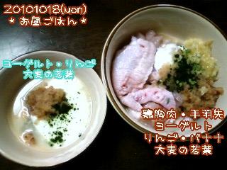 20101018(mon)お昼