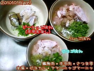 20101018(mon)夜ごはん