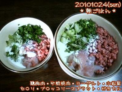 20101024(sun)朝ごはん