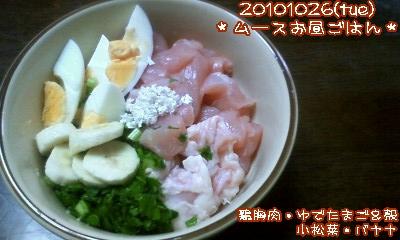 20101026(tue)ムースお昼ごはん