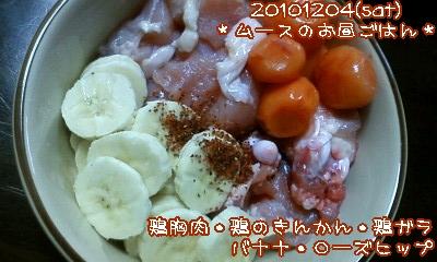 20101204(sat)ムースのお昼ごはん