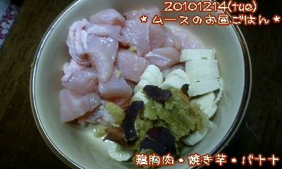 20101214(tue)ムースのお昼ごはん