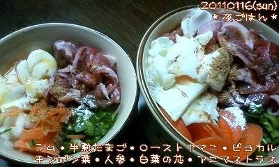 20110116(sun)夜ごはん