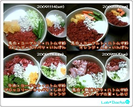 20091114(土)~20091117(火)夕飯