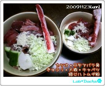 20091123(mon)夕飯