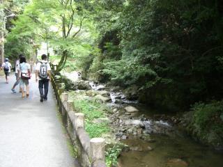 箕面の滝道-1