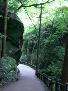 箕面の滝道-2