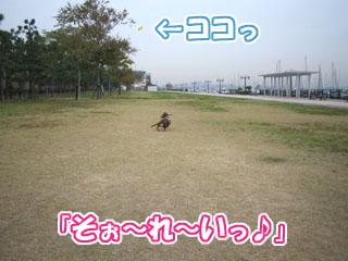 11.11.1.1.jpg
