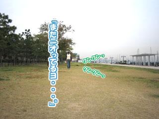 11.11.3.3.jpg