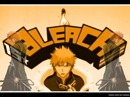 BLEACH039.jpg