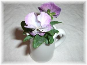 青や紫のお花が大好きなんです