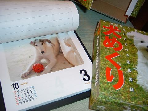 犬めくり当選 (1)0001