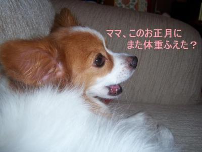 100_2689.jpg