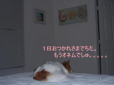 100_2772.jpg