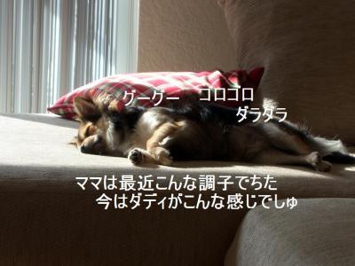 100_2954.jpg